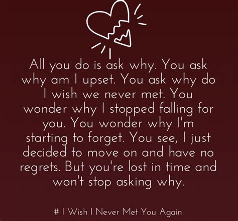 I You Quotes Wish I Never Met You Quotes For Separated Couples