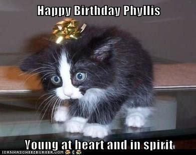 happy birthday phyllis young  heart   spirit