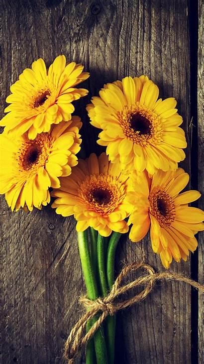 Iphone Yellow Flowers Wood Gerbera Board 6s