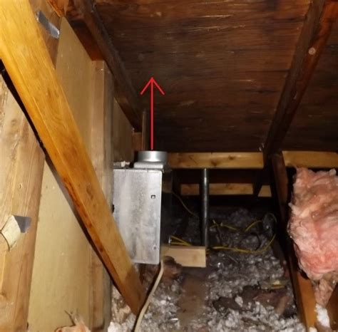 Amazing Can Black Mold Make You Sick Collection