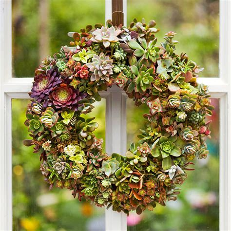 design succulent wreaths with kathi
