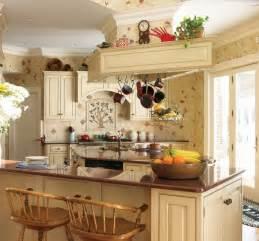 french kitchens design