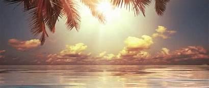 Cinemagraphs Wix Website Site Element Needs Beach2
