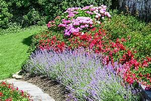 Rosen Und Lavendel : rosenpflege rosen egli gartenbau ag uster ~ Yasmunasinghe.com Haus und Dekorationen