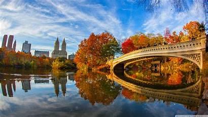 York Central Park Fall Foliage Uhd 4k