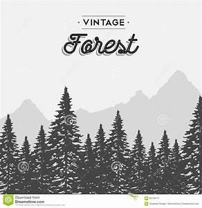 Vintage Forest Text Label On Winter Tree Landscape Stock ...