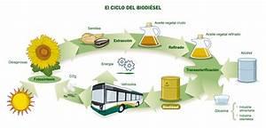 Biocombustibles: bioetanol y biodiésel: Introducción: Combustibles fósiles y biocombustibles