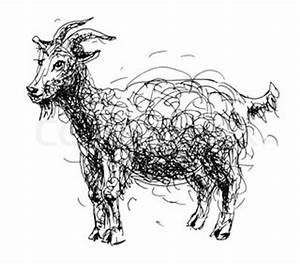Holy child with donkey, lambs, goat and calf   Vector ...