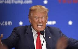 Image result for trump crazy images