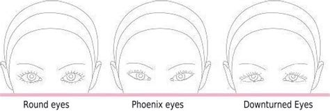 eye shapes affect   makeup
