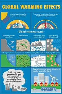 This Graphic Demonstrates Some Of The Causes Of Global