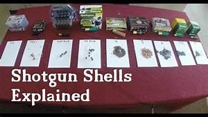 Ammo Size Chart Shotgun Shells Explained Youtube