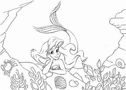 Sea Coloring Under Mermaid Mitraland