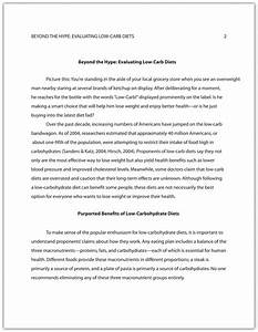 apa style sample essay apa style example essay thesis about
