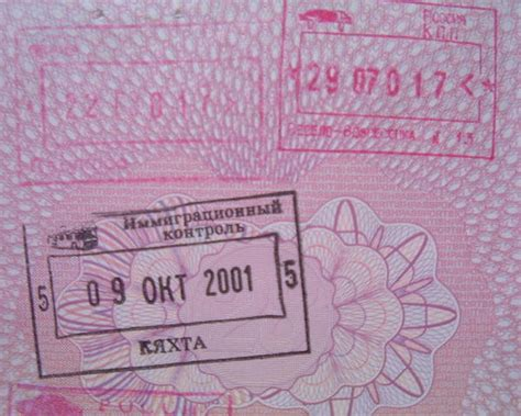 russian passport stamps photo