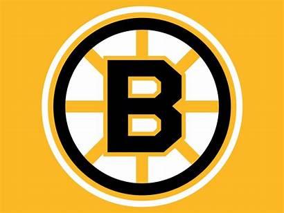 Bruins Boston Logos Nhl 1949 Hockey Team