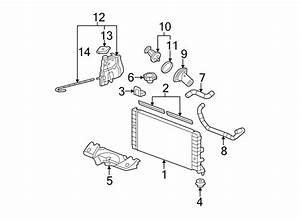 Chevrolet Impala Radiator Coolant Hose  3 5  U0026 3 9 Liter  W