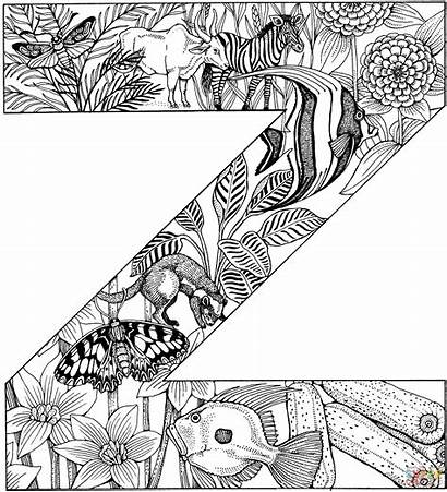 Letter Coloring Pages Alphabet Animals Colouring Printable