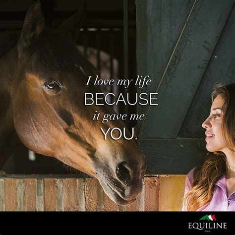 i my because it gave me you equiline quotes horsey