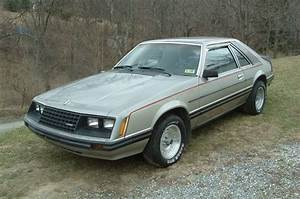 Silver 1981 Ford Mustang Hatchback - MustangAttitude.com Photo Detail