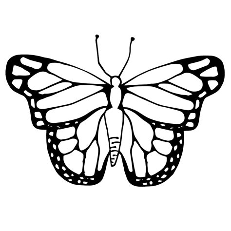 Butterfly Clip Butterfly Cycle Clipart Black And White Collection
