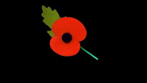when did poppies become symbol of remembrance top 28 when did poppies become symbol of remembrance the poppy symbol of remembrance