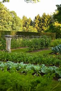169 best kitchen gardens images on Pinterest