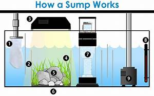 Diy Aquarium Sump Plans