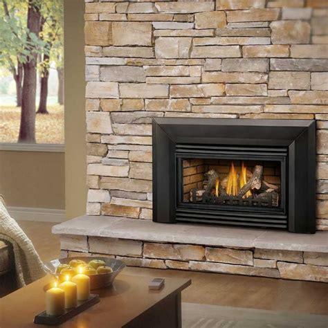 napoleon roxbury  gas fireplace insert