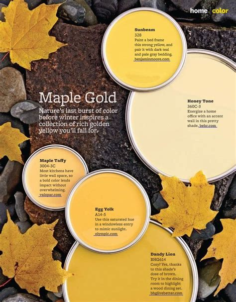 maple gold paint colors interiors by color
