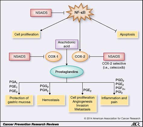 aspirin   nsaids  chemoprevention agents