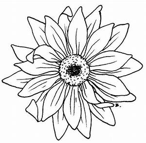 35 best Sun Flower Tattoo Outlines images on Pinterest ...
