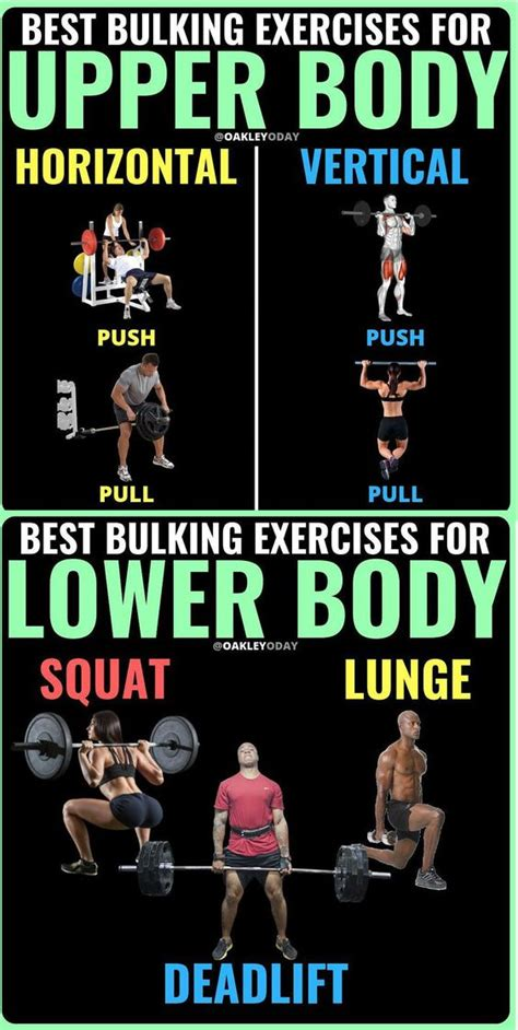 best bulking workouts best bulking workout exercice for uper and lower