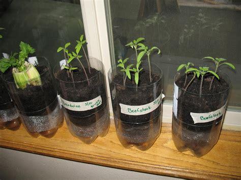 home farm soda bottle planter update