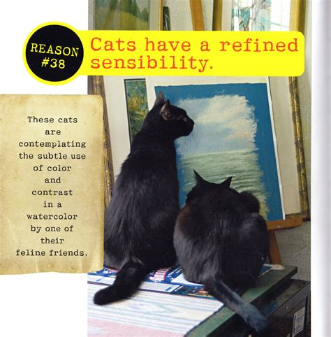 cat cats geographic national well better than why dogs re dog confessions mewsette boys thecreativecat