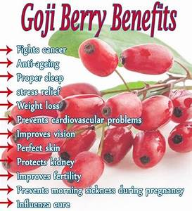 Goji berry Benefits They are used for preparing various ...