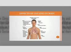 Causes and Effects of Drug Abuse By Sahyog Clinic YouTube