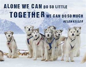 TEAM ONE - Page... Dog Sledding Quotes