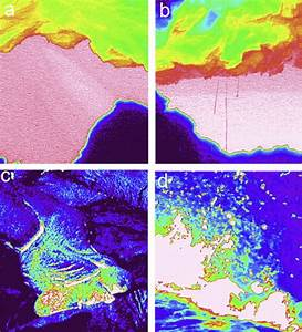 Details Of Skylight  Lava Flow And Lava Fountain Morphologies   A