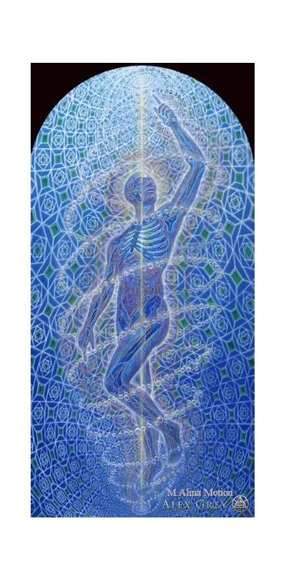 Alex Grey Gray Alexgrey Paintings Monochord Psychedelic