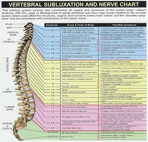 Spinal Chart And The Corresponding Parts Of The Body It Affects