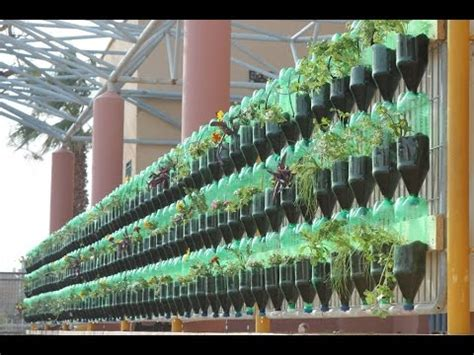 Vertical Garden Project by The Green Wall Educational Vertical Garden Bottle System