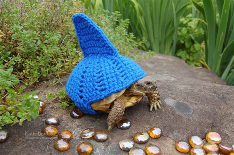 turtle sweaters snail and tortoise sweaters really do exist and they 39 re