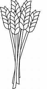 Wheat Coloring Pages Clip Vector Again Bar Looking Case Don sketch template