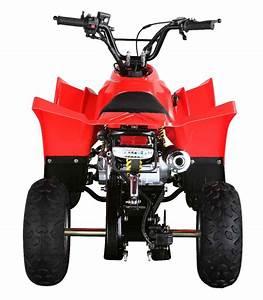 110cc Peach Sport Atv Loncin