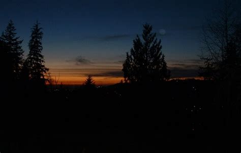 Aberdeen Wa Harbor Heights View At Dusk Photo Picture