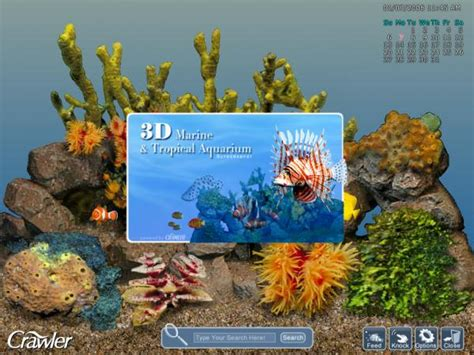 bureau de change bristol airport telechargement aquarium gratuit ecran veille 28 images