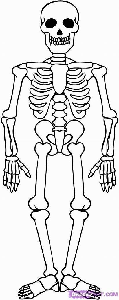 Coloring Skeleton Printable Pages Sheet Popular