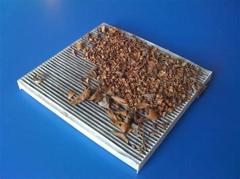 what does a cabin air filter do what does your cabin air filter do kenwood tire
