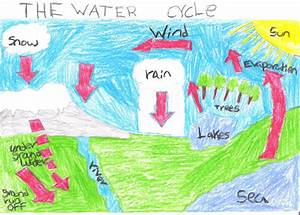 Water Cycle By Jc Jpg 1 600 U00d71 147 Pixels